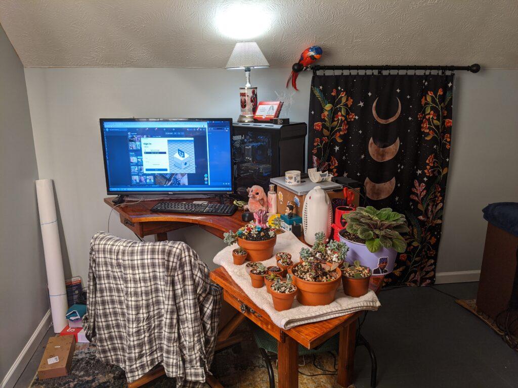 the whole setup